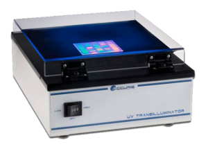 Electrophoresis Systems & Equipment